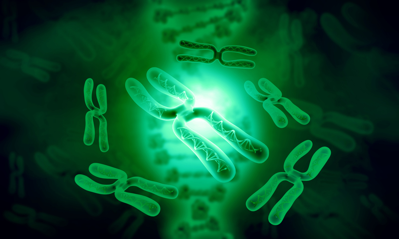 Telomeres & the Anti-aging Effects of Lithium